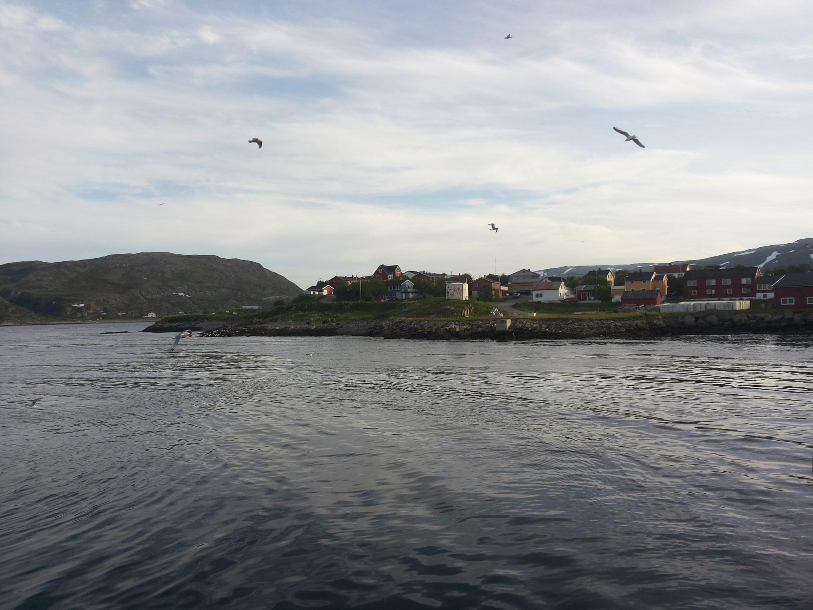 Båtsfjord1