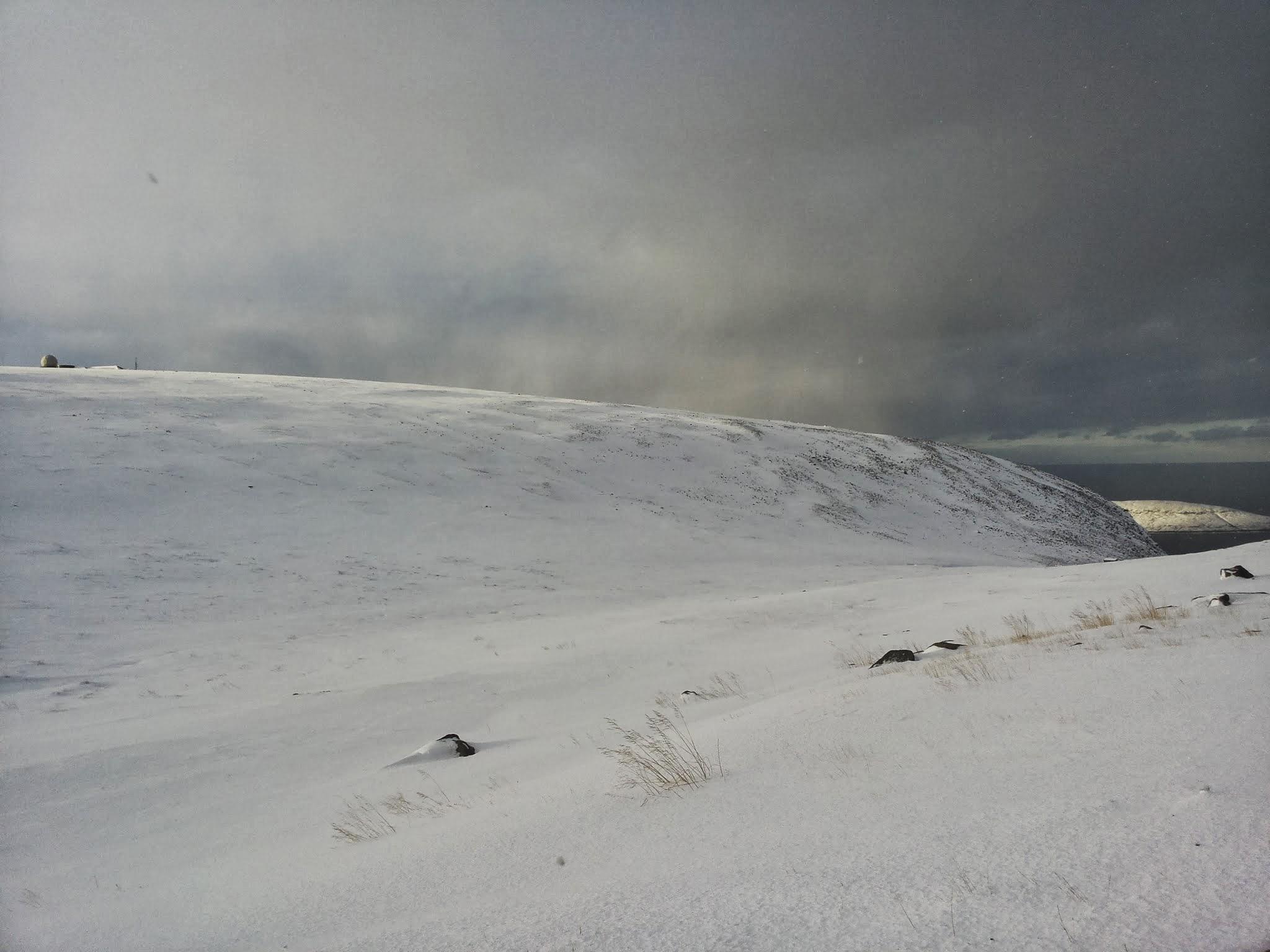Nordkapp8