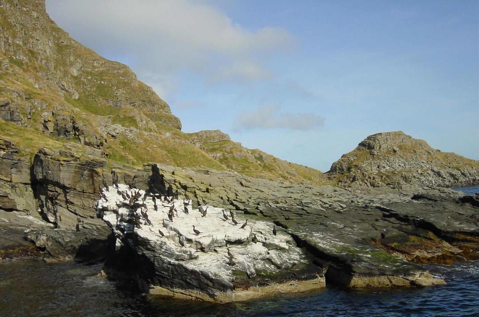 Storfjellet og Vedøya8
