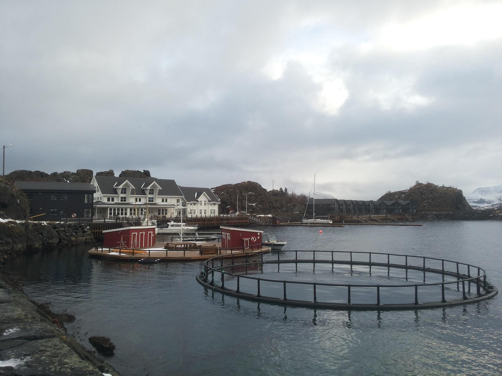 Hamn i Senja2