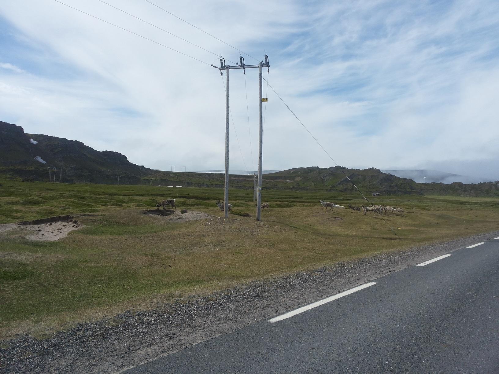 Nasjonal Turistveg Varanger17