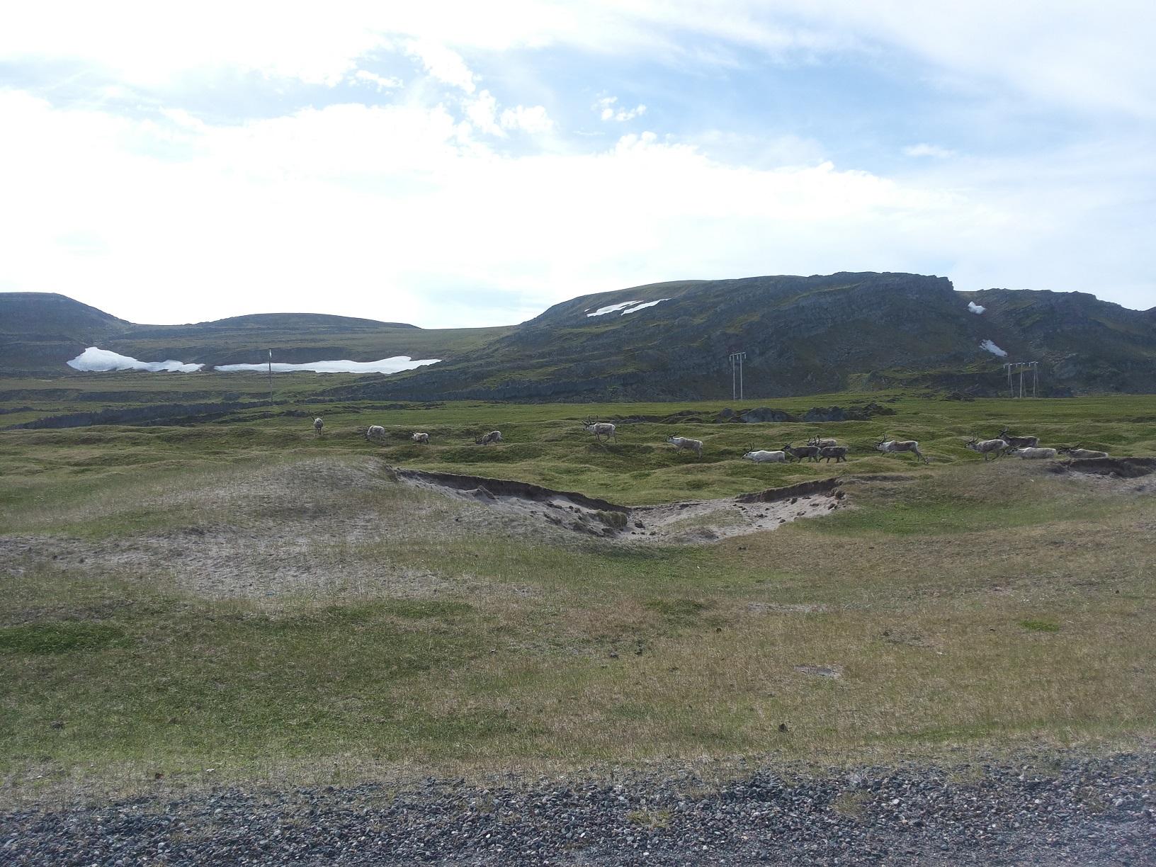 Nasjonal Turistveg Varanger18