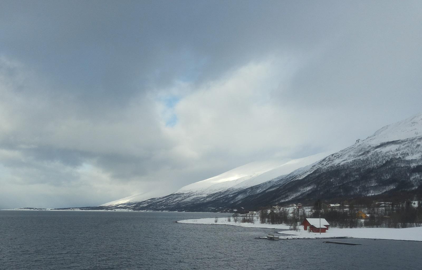 Nordmannvik2