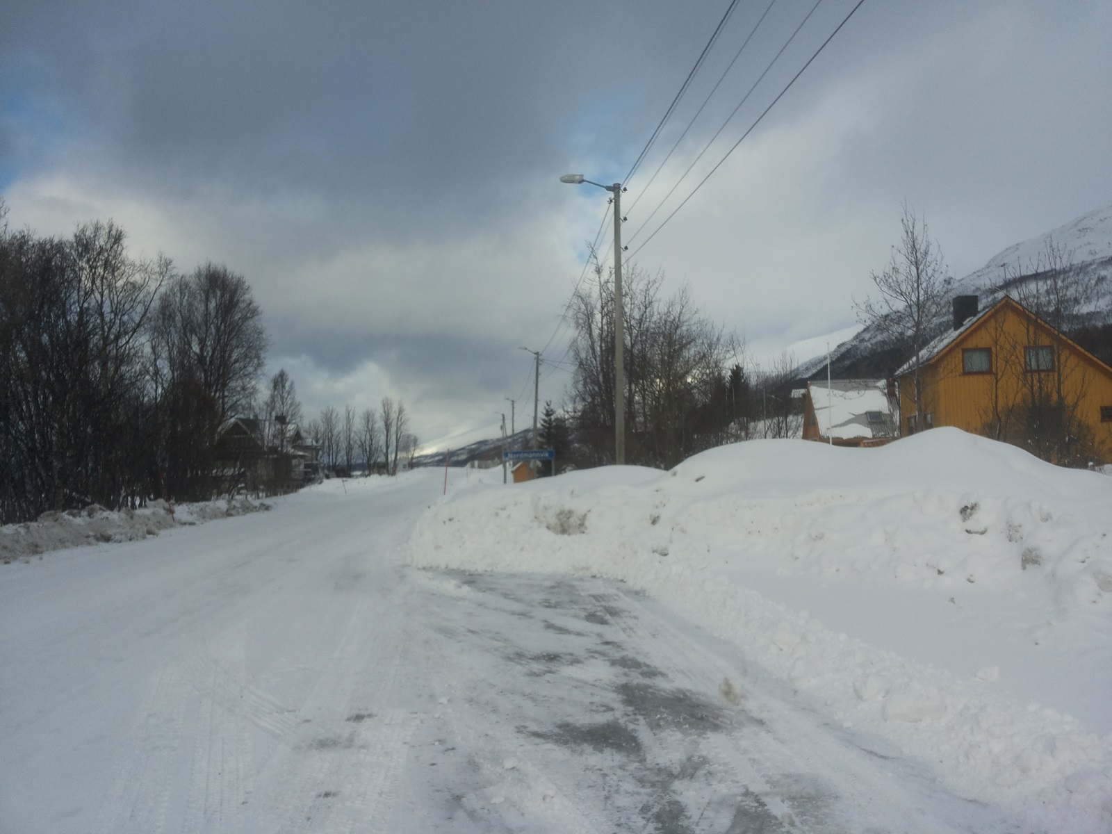 Nordmannvik4